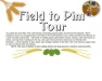 Field to Pint Craft Brewery Tour (Eastern NY)