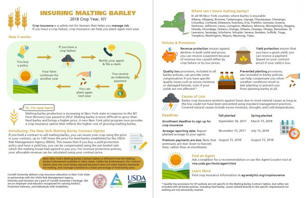 Insuring Malting Barley in New York in 2018