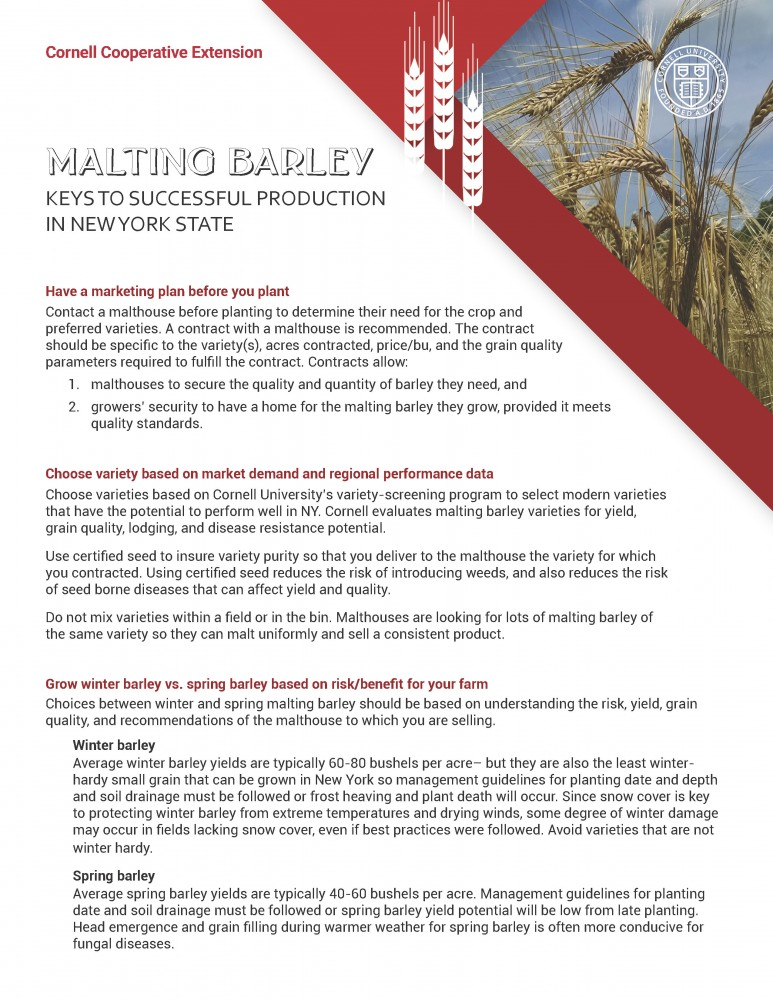 Malting Barley: Keys to Successful Production in NYS (cover image)