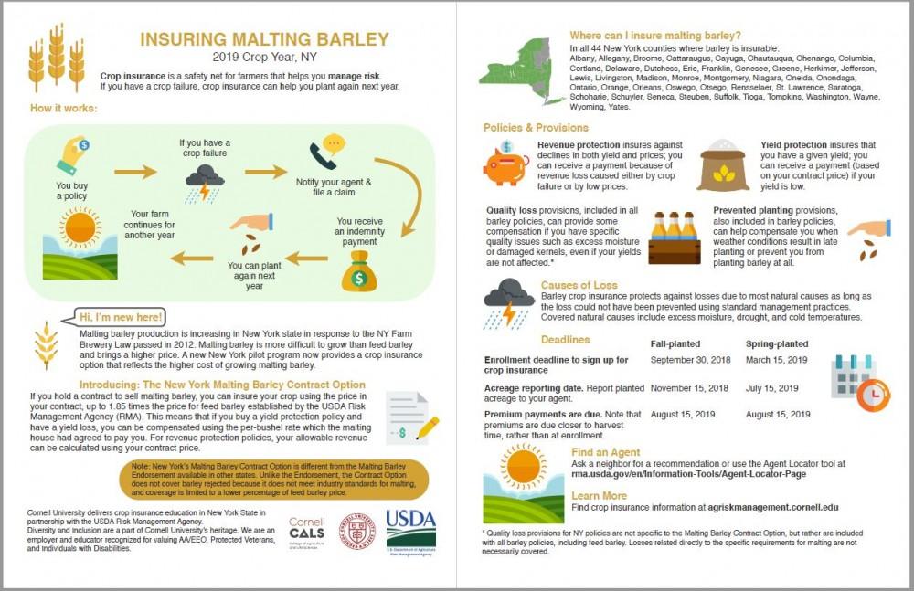 Insuring Malting Barley in 2019 Factsheet