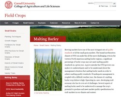 Cornell Malting Barley Resources -- Breeding Program, Variety Trials, Research