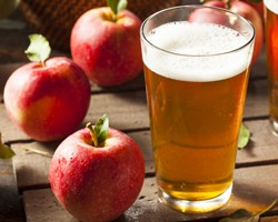 Hard Cider Supply Chain Analysis